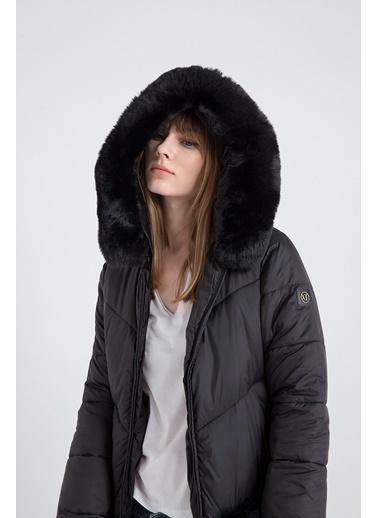 Xtsy Ceket Siyah